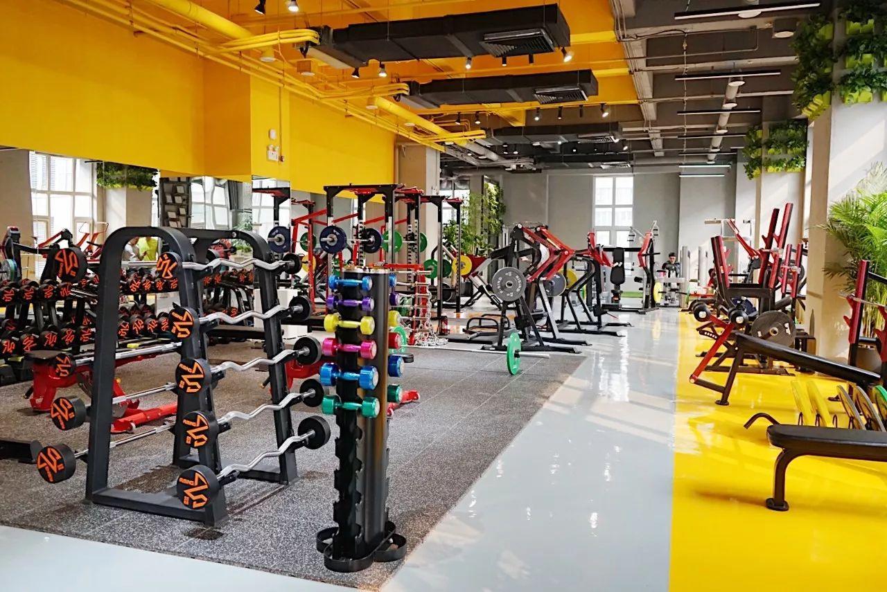 「工作室开店问答」健身房为什么容易倒闭